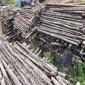 齐齐哈尔模板金沙城长期回收 林建祥 胶合木方回收长期回收